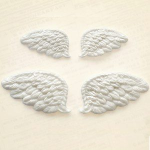 KatySue Mould Wings