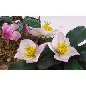 Fine Cut - christmas rose petal