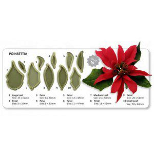 JEM Cutter - Poinsettia - Set
