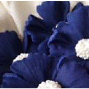 AD - Zuckermasse in marineblau