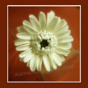 PME Sunflower/Daisy/Gerbera Plunger Cutter, 70 mm