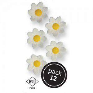 PME White Daisies Pkg/12