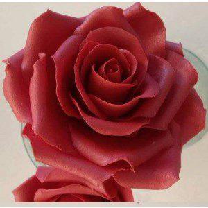 Zuckerblumenkurs - Rose mit Knospe und Blattgrün
