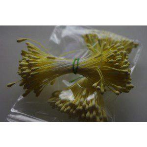 Staubgefäße / Stamens tränenförmig in gelb