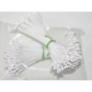Staubgefäße / Stamens tränenförmig in weiß