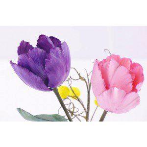 Zuckerblumenkurs - Tulpen mit Ginster - 23./24.2.