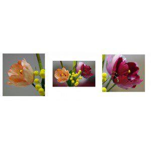 Zuckerblumenkurs - Tulpe