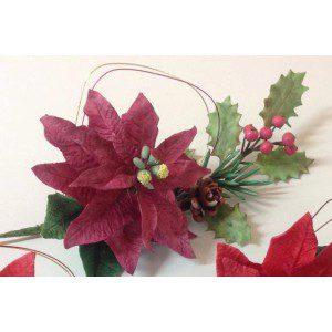 Zuckerblumenkurs - Weihnachtsstern
