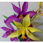 Fine Cut - Spathoglottis Orchidee Cutter